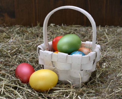 basket colorful eggs