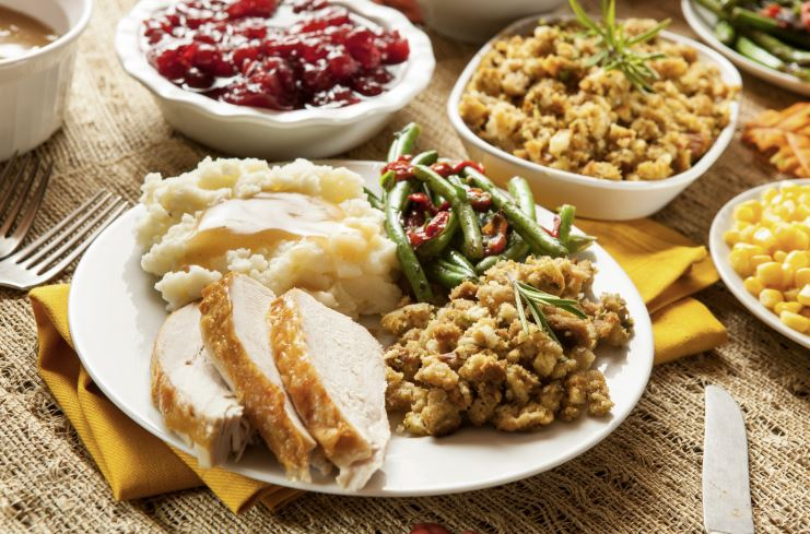 Plate of Thanksgiving Turkey